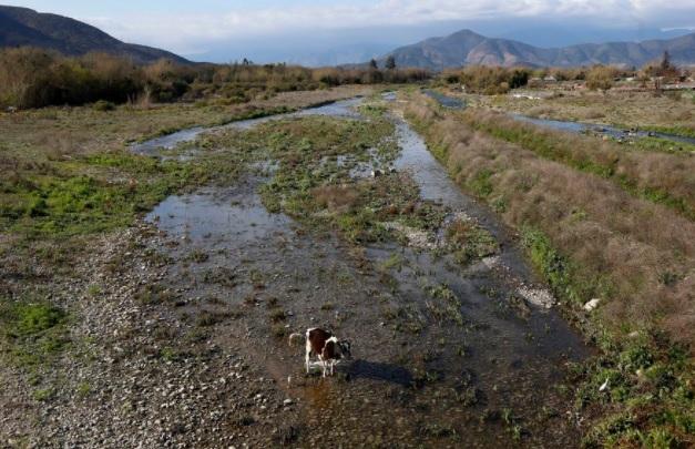 El regreso de La Niña: confirmación de llegada de fenómeno climático al país presagia un verano fresco y menos caluroso en la zona central